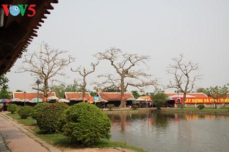 Pagoda Keo: singularidad arquitectónica de la provincia norteña de Thai Binh - ảnh 4
