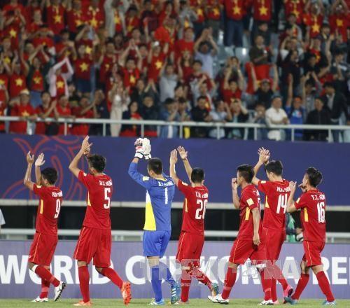 Exaltan impresionante debut de Vietnam en Copa Mundial sub-20 de fútbol  - ảnh 1