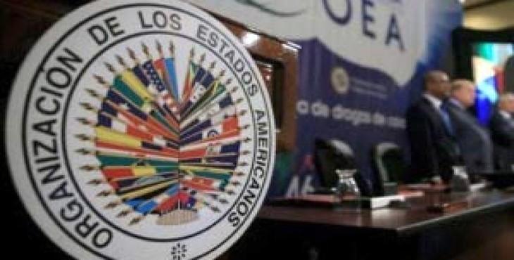 Suspenden sesión de la OEA sin resolución final sobre Venezuela - ảnh 1