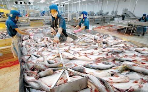 Exportación de productos acuíferos de Vietnam para cumplir la meta trazada de 2017 - ảnh 1
