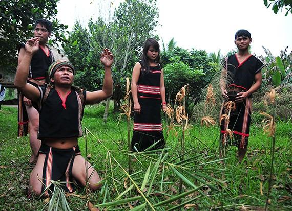Los Xo Dang festeja la nueva cosecha  - ảnh 1