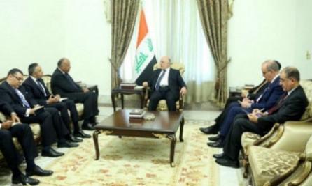 Egipto respaldará a Iraq en recuperar la seguridad después de su victoria ante el EI    - ảnh 1