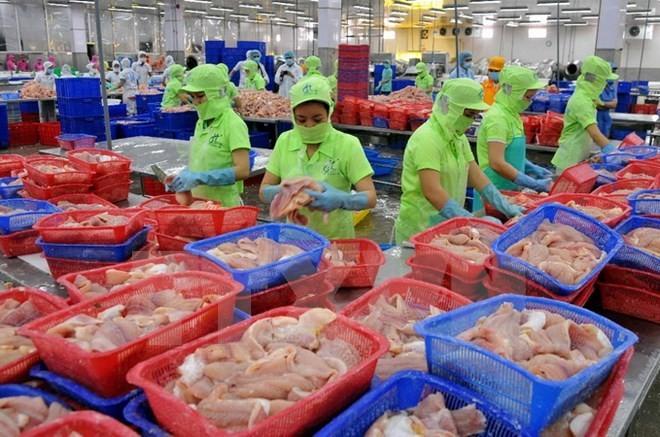Vietnam factura ingresos multimillonarios por la exportación de productos acuáticos  - ảnh 1