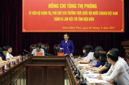 Piden promover el desarrollo socioeconómico de la provincia de Dien Bien  - ảnh 1