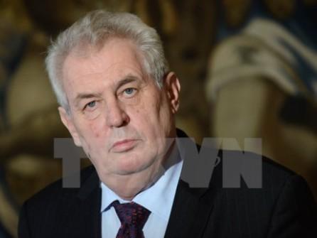 República Checa celebrará elecciones presidenciales en enero - ảnh 1