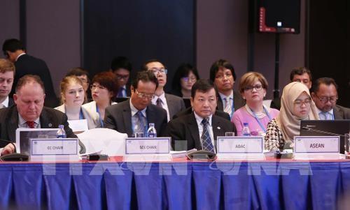SOM3 prepara la agenda para la Semana de Alto Nivel de APEC  - ảnh 1