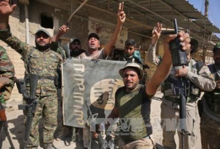 Fuerzas iraquíes retoman la región de Tal Afar del Estado Islámico - ảnh 1