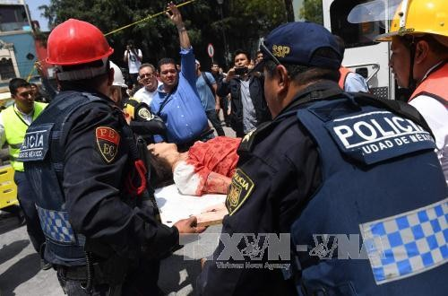 Aceleran la labor de rescate y socorro tras el terremoto de magnitud 7,1 en México  - ảnh 1