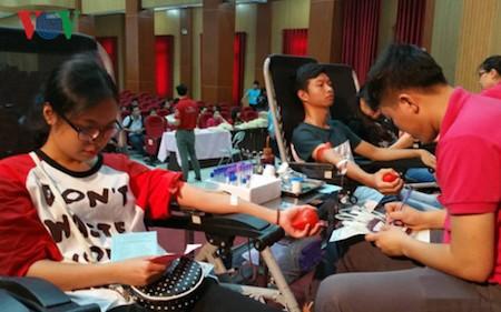 Celebran Festival de donación de sangre  - ảnh 1