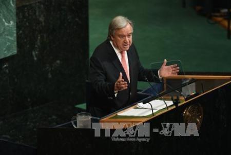 Jefe de la ONU llama a una solución diplomática para la crisis coreana - ảnh 1