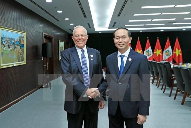 Dirigentes de Vietnam y Perú resaltan las potencialidades para afianzar la cooperación binacional - ảnh 1