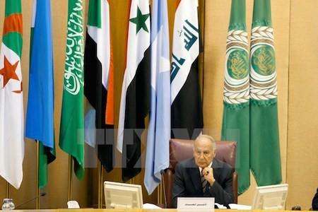 Liga Árabe presidirá una reunión extraordinaria sobre Irán - ảnh 1
