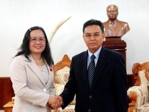 Pemimpin Laos menerima delegasi pekerjaan Dewan Bangsa-Bangsa Majelis Nasional - ảnh 1