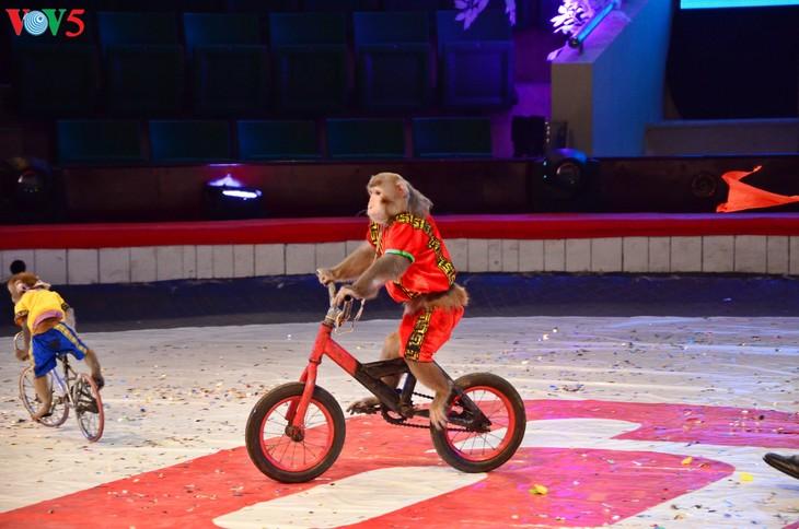 Gala Sirkus Internasional sehubungan dengan peringatan ultah ke-60 Federasi Sirkus Vietnam - ảnh 16