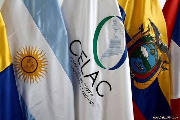 Amerika Latin memperkuat integrasi dan solidaritas - ảnh 1