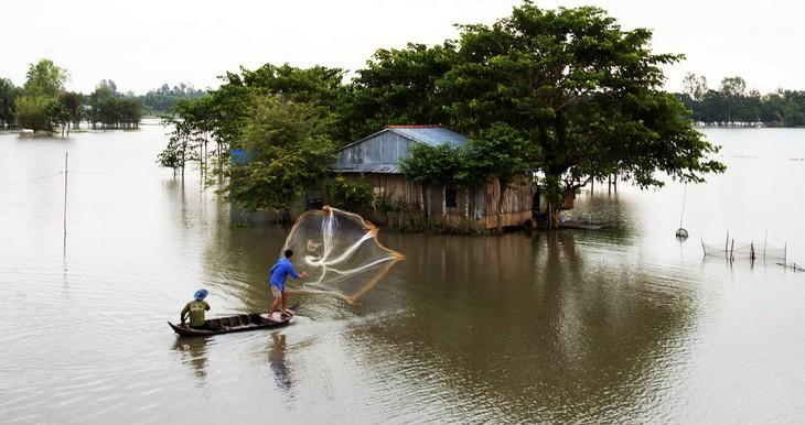 Kaum tani propinsi Dong Thap mencari nafkah pada musim air pasang - ảnh 1