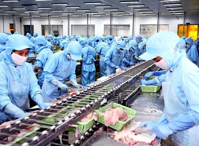 Ekspor hasil perikanan mendapat paling banyak keuntungan dari FTA antara Vietnam dan EAEU - ảnh 1