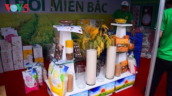 Pembukaan Pekan raya pertama hasil pertanian, kerajinan tangan industri kecil Vietnam - ảnh 5