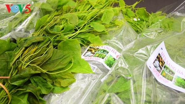 Pembukaan Pekan raya pertama hasil pertanian, kerajinan tangan industri kecil Vietnam - ảnh 8