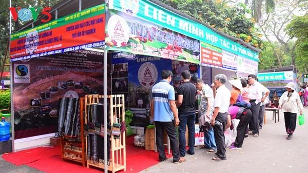 Pembukaan Pekan raya pertama hasil pertanian, kerajinan tangan industri kecil Vietnam - ảnh 14