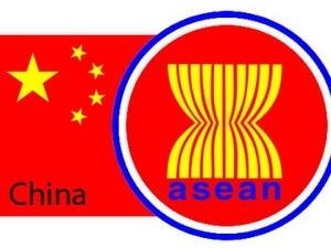 Pejabat Senior ASEAN-Tiongkok bersidang tentang penggelaran DOC - ảnh 1