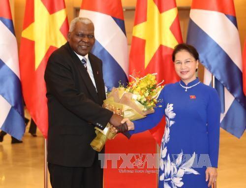 Memperkokoh hubungan tradisional istimewa Vietnam- Kuba - ảnh 1