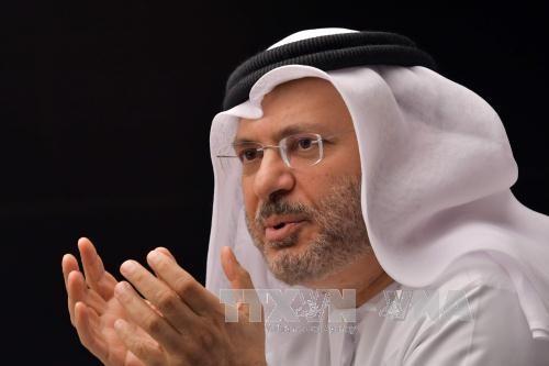 UAE: Negara-negara Arab tidak mencari cara mengubah rezim di Qatar - ảnh 1