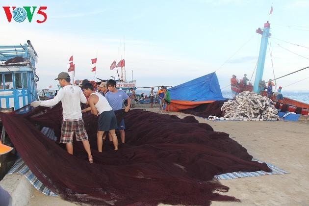 Kehidupan sehari hari di kabupaten pulau Ly Son - ảnh 3