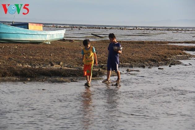 Kehidupan sehari hari di kabupaten pulau Ly Son - ảnh 6