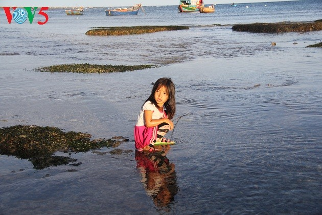 Kehidupan sehari hari di kabupaten pulau Ly Son - ảnh 10