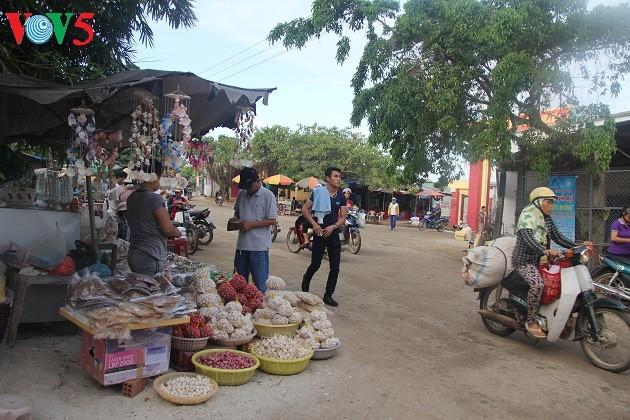 Kehidupan sehari hari di kabupaten pulau Ly Son - ảnh 19