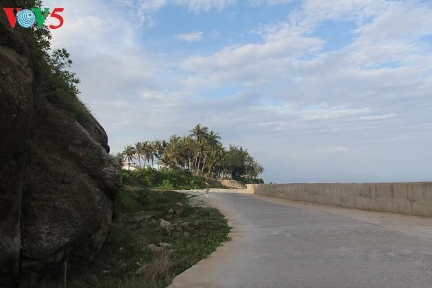 Kehidupan sehari hari di kabupaten pulau Ly Son - ảnh 20