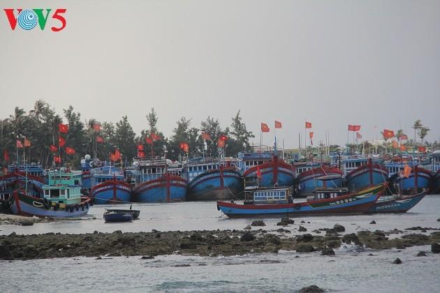 Kehidupan sehari hari di kabupaten pulau Ly Son - ảnh 1