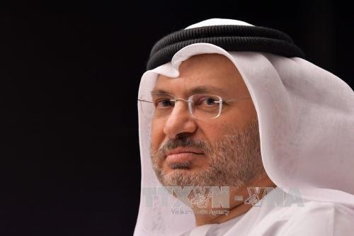 Solusi-solusi diplomatik untuk menurunkan  suhu ketegangan  di Teluk - ảnh 2