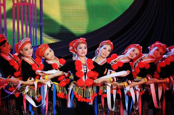 Kontes menari profesional etnis-etnis minoritas kawasan Vietnam Selatan - ảnh 1