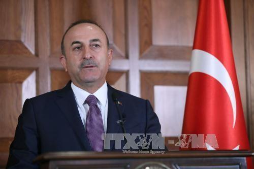 Ketegangan belum mereda setelah pertemuan Uni Eropa-Turki - ảnh 1