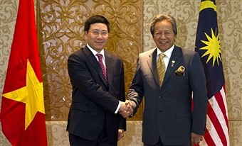 Vietnam dan Malaysia memperkuat kerjasama komprehensif - ảnh 1