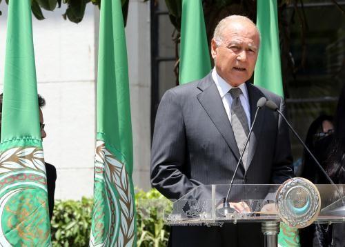 Liga Arab dan negara-negara  di kawasan mendesak Israel supaya menghindari semua  politik yang menegangkan situasi - ảnh 1