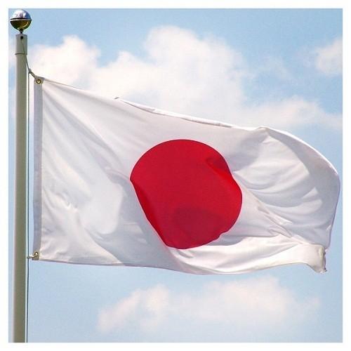 Jepang memperkuat sanksi terhadap RDRK - ảnh 1