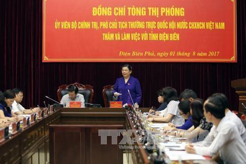 Wakil Harian Ketua MN Tong Thi Phong melakukan temu kerja dengan pemimpin propinsi Dien Bien - ảnh 1