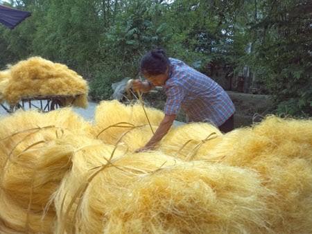 Desa pembuatan soun Cu Da - ảnh 2