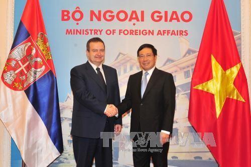 Deputi PM, Menlu Pham Binh Minh melakukan pembicaraan dengan Deputi Pertama PM, Menlu Serbia - ảnh 1