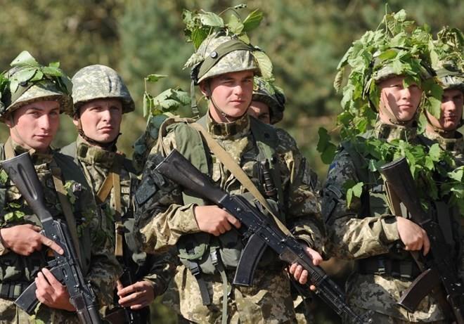 "Ukraina-NATO memulai latihan perang ""Rapid trident"" - ảnh 1"