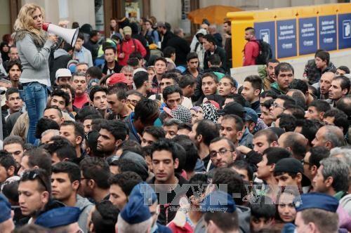 Eropa terpecah-belah karena alokasi kuota migran - ảnh 1