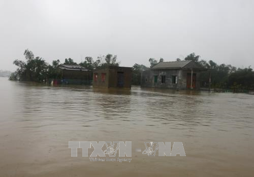 Tiongkok berbagi dengan Vietnam pekerjaan mengatasi akibat  topan Damrey - ảnh 1