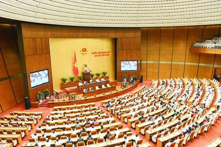 Meningkatkan  hasil-guna  aktivitas  interpelasi Majelis Nasional Vietnam - ảnh 1