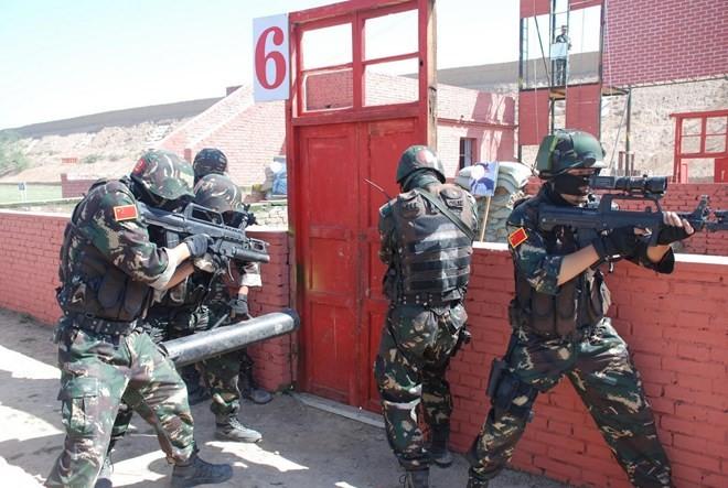 Китайская армия участвует в антитеррористических операциях за рубежом - ảnh 1