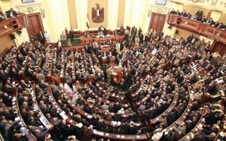 В Египте избран председатель парламента - ảnh 1