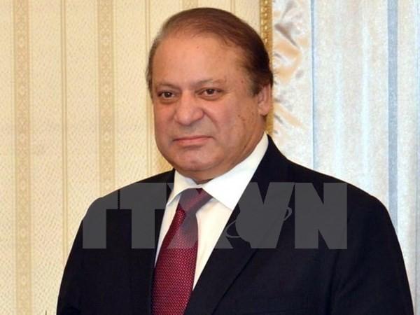 Пакистан поддерживает антитеррористическую коалицию во главе с Саудовской Аравией - ảnh 1