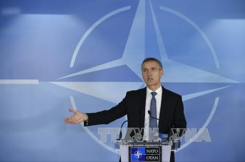 НАТО хочет возобновить переговоры с Россией - ảnh 1